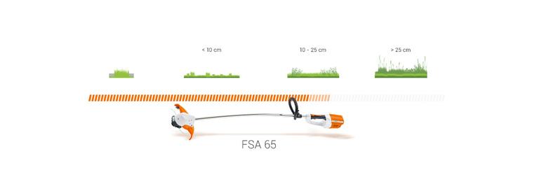 FSA 65