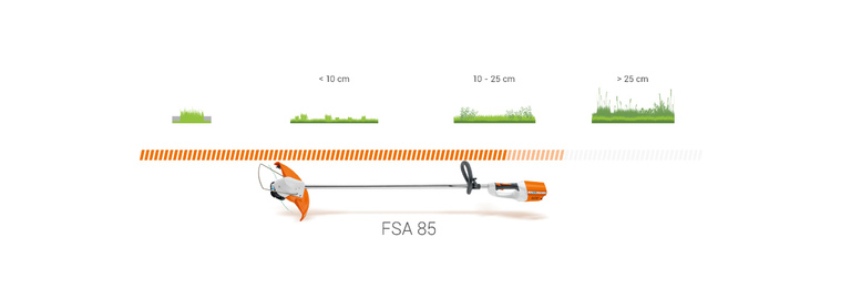 FSA 85