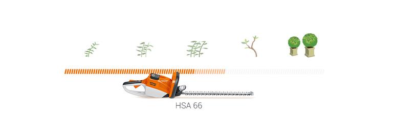 HSA 66