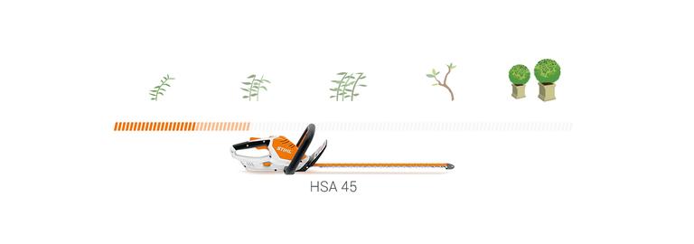 HSA 45